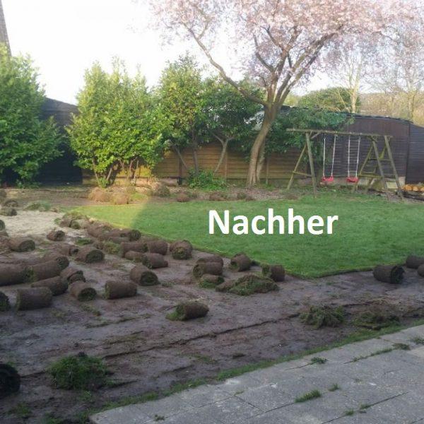 IMG-Nachher